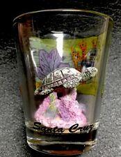 Santa Cruz , California Turtle Souvenir Shot Glass With Sculpted Turtle And Reef