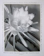 ROI PARTRIDGE Signed 1961 Original Photograph - LISTED