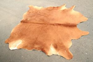 Cowhide Rug Decoration Ikea Koldby Brown Full Size Complete Brand Leather Gift