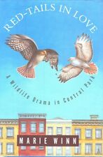 Red-Tails in Love Central Park New York City Red Tailed Hawk Bird Book HC DJ
