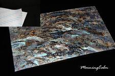 3 Sheets of Dragon Paua Shell Adhesive Veneer (Craft Luthier Lure)