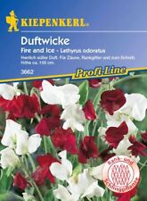 Kiepenkerl Duftwicke 3662 *Fire and Ice* süßer Duft  Zäune,Rankgitter u. Schnitt