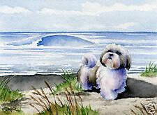 Shih Tzu Beach Dog Art Print Large by Artist Djr