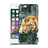 Custodia Cover Design Tigre Per Apple iPhone 4 4s 5 5s 5c 6 6s 7 Plus SE