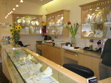 Fine Jewelry Shop Store Start Up Sample Business Plan!