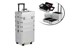 Travel Makeup Case Box Cosmetic Large Trolley Storage Beauty Nail Carry Silver