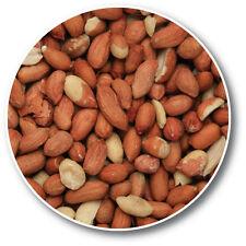 Copdock Mill Peanut Kernels Wild Bird Food Treats 25Kg Garden Feeder