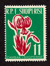Albania - 1961-SC 597-H-Lily- Flowers