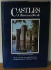 Castles: A History and Guide-R Allen  Brown,Sir John Hackett
