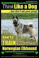 Norwegian Elkhound, Norwegian Elkhound Training AAA AKC   Think Like a Dog ~ But