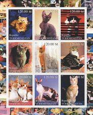 CATS FELINE PET ANIMAL KINGDOM CUTE KITTENS TURKMENISTAN 2000 MNH STAMP SHEETLET