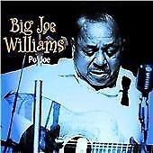 Big Joe Williams - Po' Joe (2002)