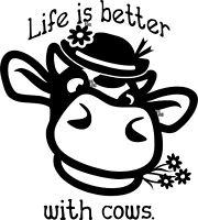 Don/'t Be A Pecker Rooster Decal Farm Chicken Hen Animal Ranch Funny Joke Cute