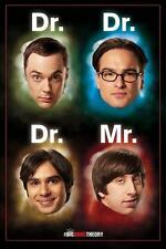 Le big bang theory: Dr M. - Maxi Poster 61 cm x 91,5 cm (new & sealed)