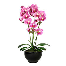 Elegant Pink Real Touch Artificial Potted Orchid (60cm) In Black Ceramic Pot