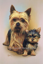 Yorkshire Terrier and Pup Print by Robert J. May