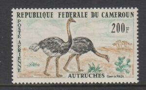 Cameroun - 1962, 200f Air. Ostrich, Bird stamp - MNH - SG 326