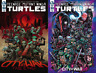 TEENAGE MUTANT NINJA TURTLES #100 A & B VARIANT SET (NM) IDW Comics TMNT
