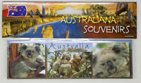 Koala Australia Photo, Image, Fridge Magnet, Souvenir.