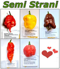 50 SEEDS of the 5 WORLDs HOTTEST CHILI PEPPERs Coll. 5: REAPER, MORUGA, DOUGLAH