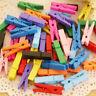 50/100pcs Mini Wooden Clothe Photo Paper Peg Clothespin Crafts Clips Mix Colors