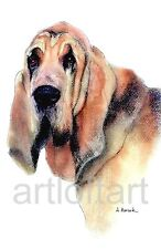BLOODHOUND  #1  DOG  ART ACEO Card Print by A Borcuk