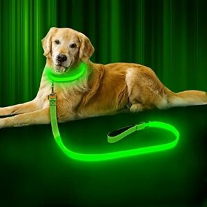BSEEN LED Dog Leash - USB Rechargeable  Reflective Night Safety Pet Leash LED St