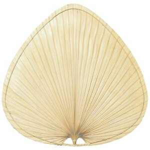 """Fanimation 18"""" Palmetto Blade, Wide Oval Bamboo, Antique, Set of 3 - PMD2ABL"""