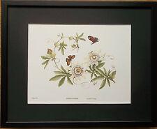 Botanical wall art, J Hague  - Passion flower, 20x16'' frame, floral prints