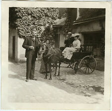 PHOTO ANCIENNE - CHEVAL CALÈCHE FIACRE ATTELAGE MODE - HORSE - Vintage Snapshot
