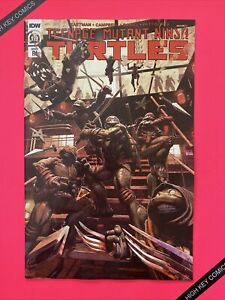 Teenage Mutant Ninja Turtles Vol 5 #119 Incentive 1:10 McArdell Variant Cvr C NM