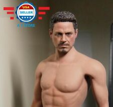 1/6 Tony Stark Iron Man Head Sculpt (no neck) for 12'' Male Figure PHICEN