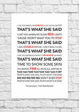 The Janoskians - That's What She Said - Song Lyric Art Poster - A4 Size