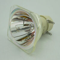 Replacement Lamp Bulb 5J.J6D05.001 For BenQ MS502 / MX503  Projectors