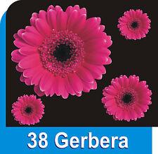 38 Gerbera Flower Decals Car Stickers Graphics Nursery Wall Window Decorations