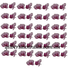 50 x Artificial Butterfly Orchid Heads Polyester Craft Flower for Wedding Bridal