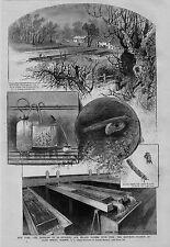 FISH HATCHERY COLD SPRING HARBOR NEW YORK McDONALD HATCHING JARS EMBRYO SALMON