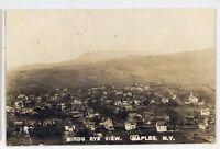 RPPC Birdseye View NAPLES NY Finger Lakes Ontario County Real Photo Postcard
