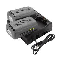 Snow Joe + Sun Joe EcoSharp® Lithium-Ion Battery Dual Port Charger | 40 Volt
