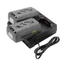 Snow Joe + Sun Joe EcoSharp® Lithium-Ion Battery Dual Port Charger | 40 Volt