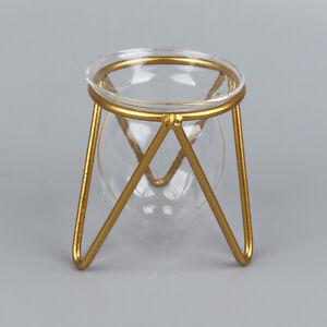 1Pcs Terrarium Flower Vase For Home Hydroponic Plant Vase Art Glass Contain OH