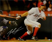 Reggie Willits Hand Signed Autographed 16x20 Photo Angels Home Swing w/COA