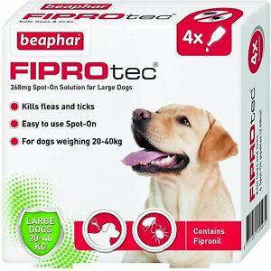 Beaphar FIPROtec Spot On LARGE DOG 4 Pipette Treatment - Flea Tick Fipronil