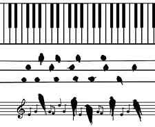 """Musical Piano Keys for Barrettes 1"""" X 4"""" Fused Glass Ceramic Decals 14CC383"""