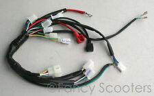 X-15 Pocket Bikes 110cc (AKA FS 539) Whole Wire harness