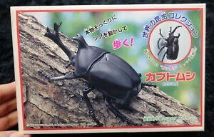 BEETLE MODEL KIT IMAI Japanese rhinoceros beetle