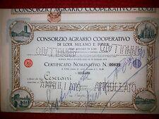CONS. AGRARIO COOPERATIVO DI LODI MILANO E PAVIA Certificato 1 Azione 1924