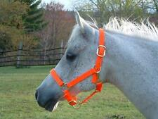 ARAB/COB HIGH VISIBILITY BLAZE ORANGE NYLON HALTER HUNTING SEASON SAFETY FR SH