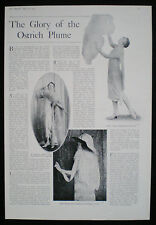 OSTRICH PLUME ART DECO FASHION DRESS CLOTHING 1pp PHOTO ARTICLE 1925