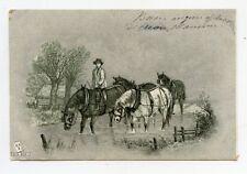 Animaux  . chevaux . Horses . Animals